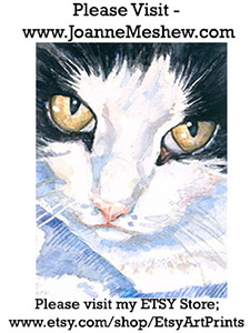 Black and White Cat Art Print Joanne Meshew 225 website
